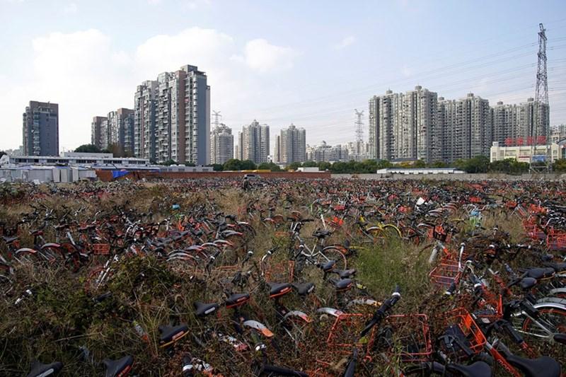 Xe đạp của nhiều startup khác nhau tại một bãi đất ở Thượng Hải.