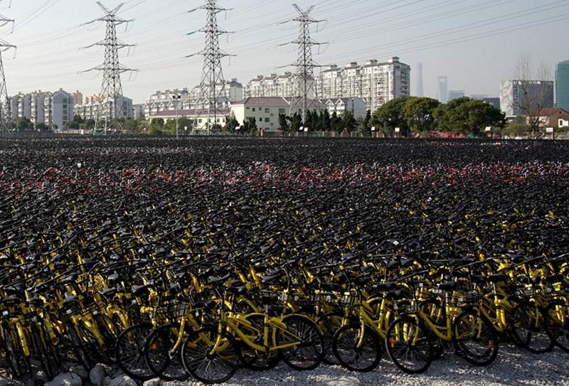 Xe đạp phủ kín một bãi đất ở thành phố Thượng Hải.