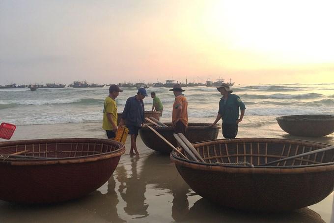 Có khoảng 50 - 60 ghe, thuyền tham gia đánh bắt mỗi ngày. Họ ra khơi từ 4h chiều và quay về khoảng 5h sáng ngày hôm sau.