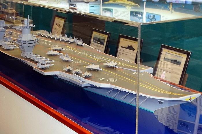 Khi mang theo phương tiện đổ bộ cũng như lính thủy đánh bộ thì trên tàu sẽ phải có kho nhiên liệu riêng, đi kèm với kho vũ khí và nơi ăn nghỉ cho vài trăm quân nhân, điều này sẽ gây ra xung đột lợi ích giữa các chức năng.